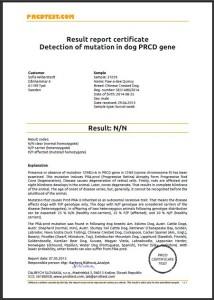 prcd-PRA clear